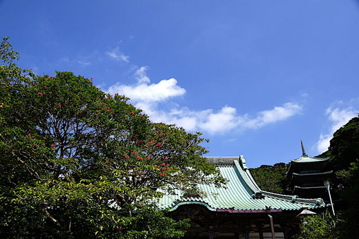 200825龍口寺サルスベリ