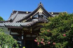 140803妙隆寺サルスベリ