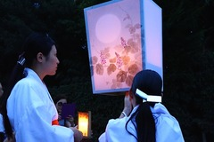 140807八幡宮ぼんぼり祭り1