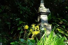 131030安養院政子の墓