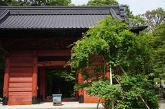 120718妙本寺ノウゼンカズラ
