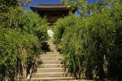120821海蔵寺ハギ