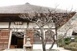 060219円覚寺
