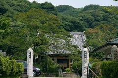 110813円久寺サルスベリ