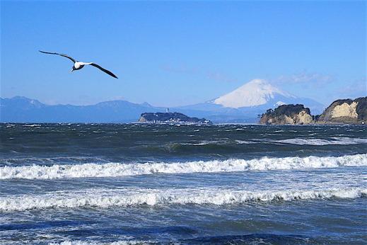 160119材木座海岸富士山1