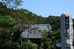 190817円久寺サルスベリ
