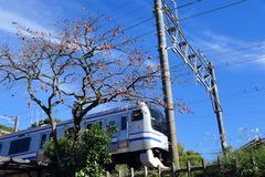 151116横須賀線 柿、扇ガ谷1
