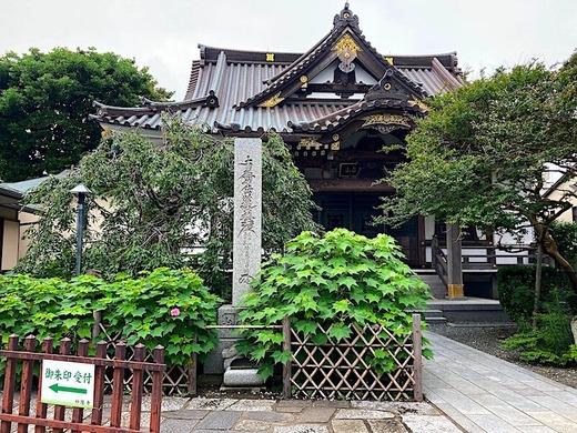200716妙隆寺フヨウ