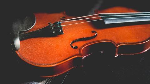 violin-2562863_1920