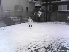 0218雪