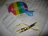 2010年KAT-TUN韓国ライブ企画2日目