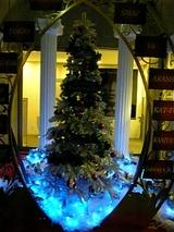 ファミリークラブクリスマスツリー1
