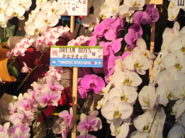 2012年DREAMBOYS祝い花1