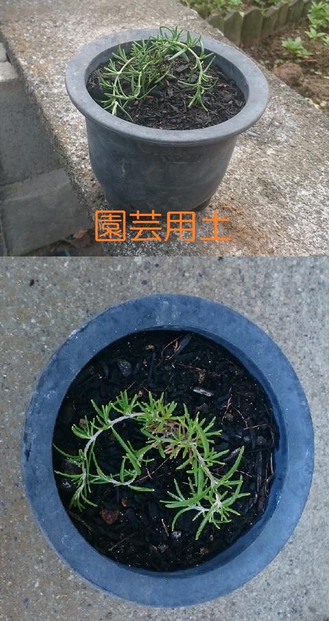 ③園芸用土