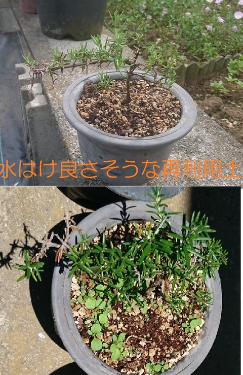 ②再利用土