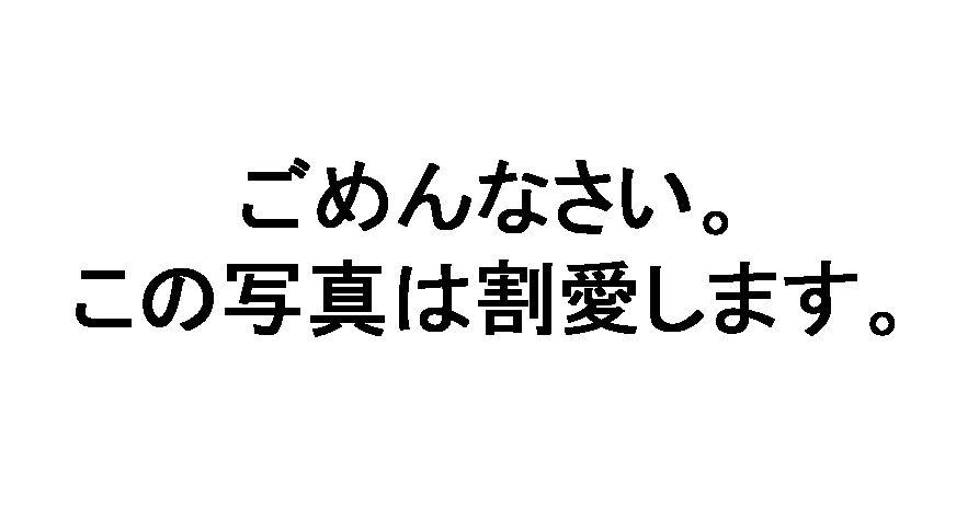 3ea41781.JPG