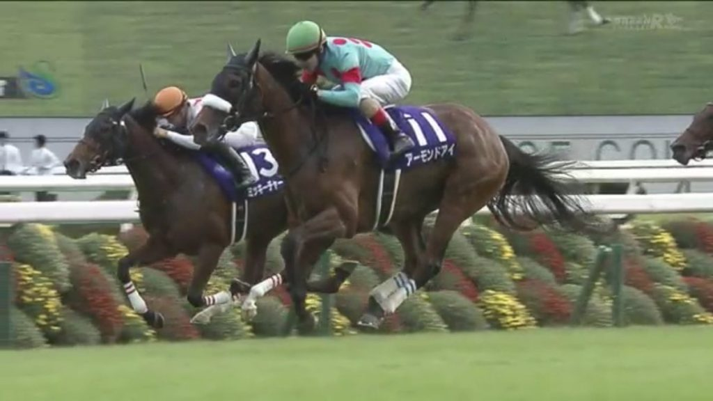 【速報】ドバイターフを勝ったのはアーモンドアイ!2着ヴィブロスで日本馬ワンツー【競馬】