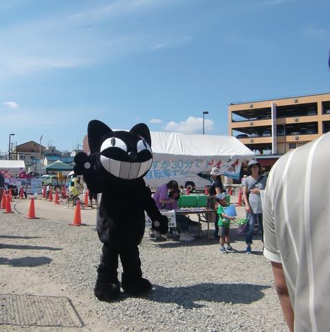 0922黒猫