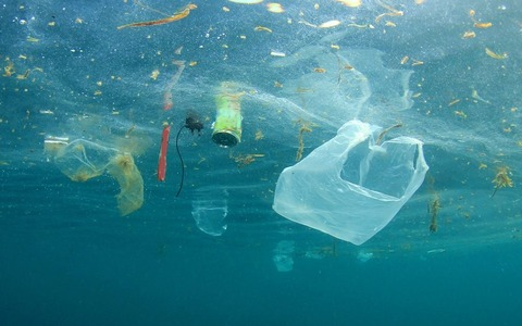 Ocean-Pollution_556842991-by-Rich-Carey-1024x640