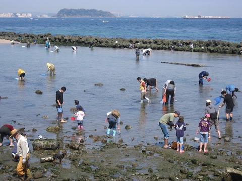 hashirimizu-beach-1308032_960_720