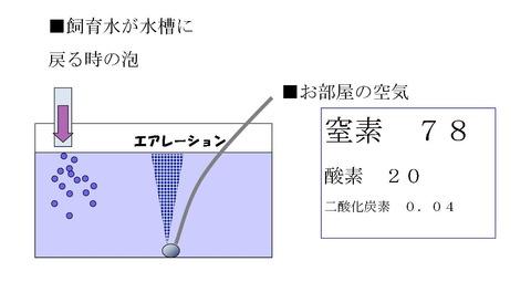 イラスト水槽