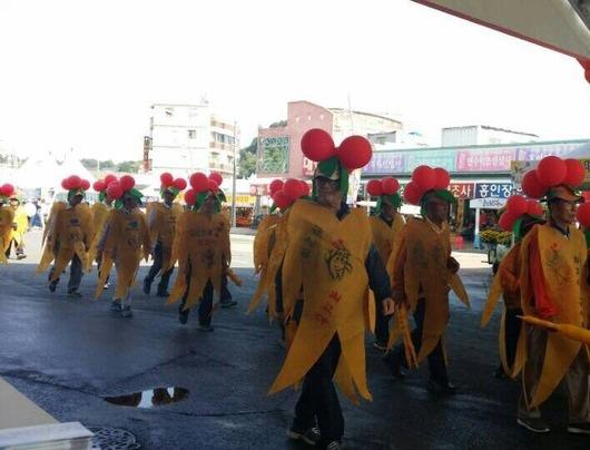 錦山高麗人参祭り パレード 人参衣装