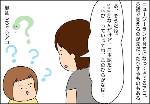 IMG_7243