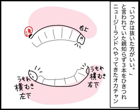 IMG_3292