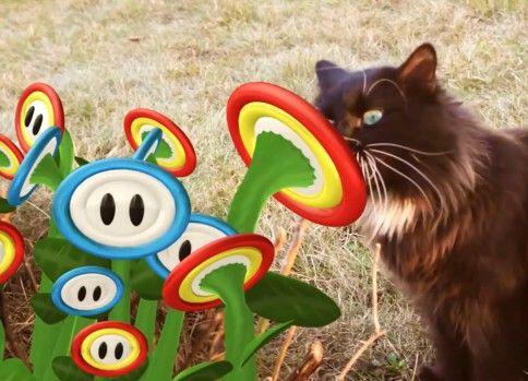 もし猫の日常に『スーパーマリオ』の世界が現れたら