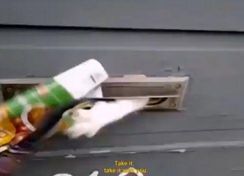 猫vs郵便配達員