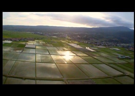 田舎の夏を飛んでみた