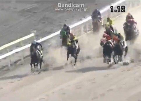 レース中の馬の前をヌコが横切る
