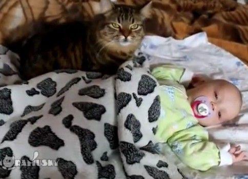 赤ん坊を寝かしつけるぬ
