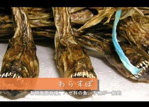 【日本全国】ゲテモノ料理・画像集