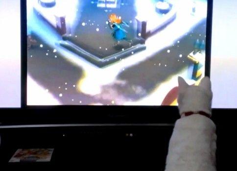 ゲームで降る雪に触りたい猫