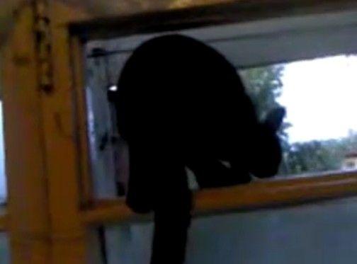 飼い主に気づき鳴き声をごまかすネコ