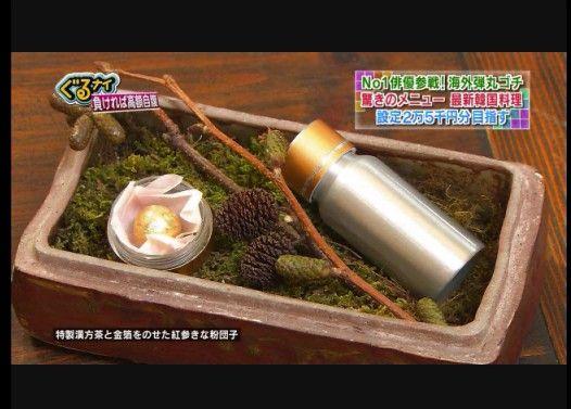 【盆栽】ぐるナイの韓国料理酷すぎワロタwww