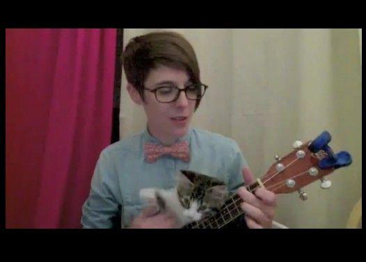 飼い主のウクレレ演奏に無理くり参加する子猫