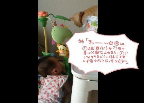 猫の声マネする赤ちゃん