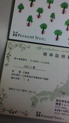 2010080911580000
