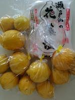 '16-4塩レモン1
