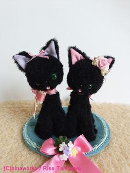 welcomecats1