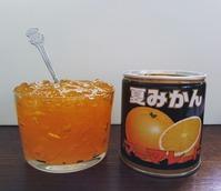 山口・夏みかんマーマレード