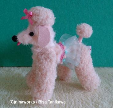 poodle_pale pink