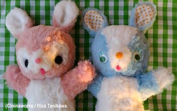 fluffy bunnies 3