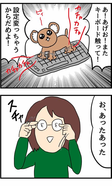 IMG_8124