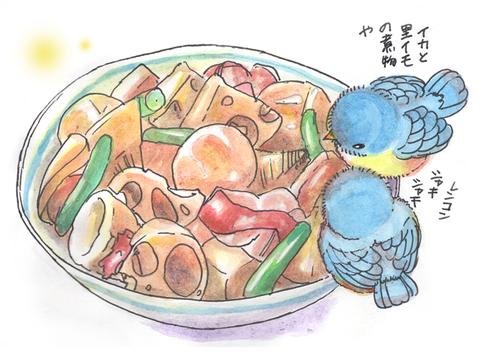 イカと里芋の煮物690