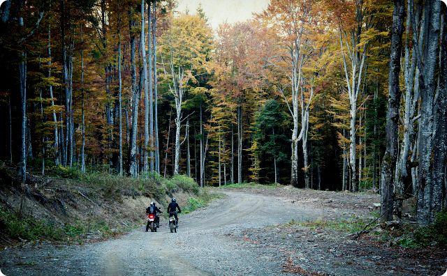 林道、バイク
