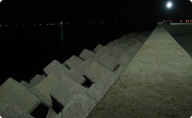 堤防、夜の海
