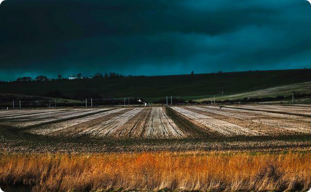 田舎、土地